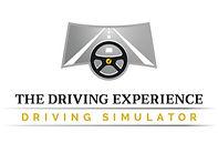 2-The-Driving-Experience-bright-medium_e