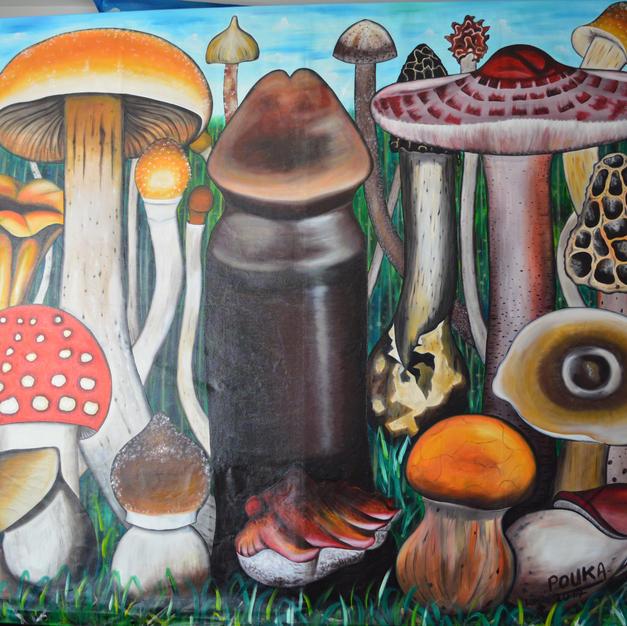 Magic Mushroom.2.JPG