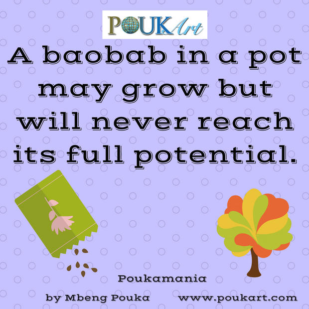 A baobab in a pot may grow but will neve