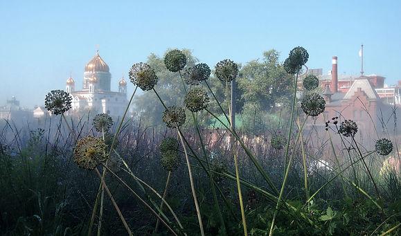 Москва. Музеон. 2014
