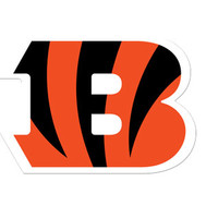 Bengals-Cropped.jpg