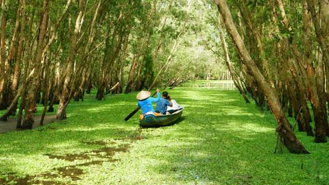 bigstock-Tra-Su-Indigo-Forest-Vietnam--7