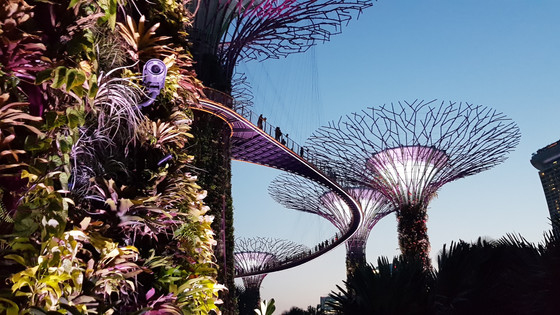 Our South East Asian Adventure:      3 days in Singapore with kids