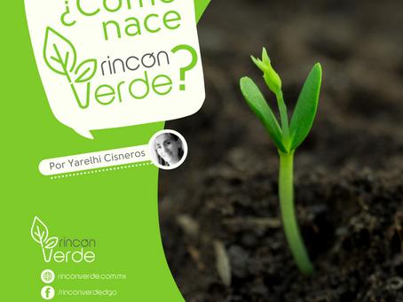 ¿Cómo nace Rincón Verde?