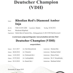 Inja ist Deutscher Champion VDH