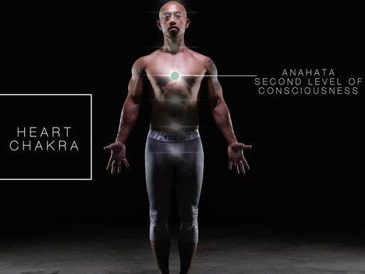 Heart Chakra - Anahata - Second level of consciousness