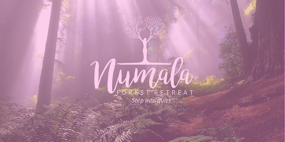 Mums Yoga and Meditation Mini Forest Retreat (4 Hrs)