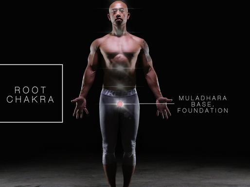 Root Chakra – Muladhara - Base, Foundation
