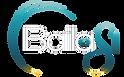Logo Bailasi blanc solo.png