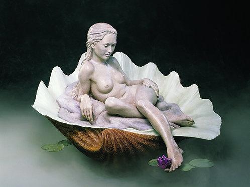 Lotus Blossom - Edition Closed
