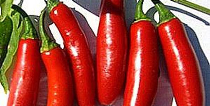 Pepper - Serrano