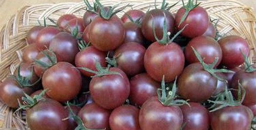 Tomato - Black