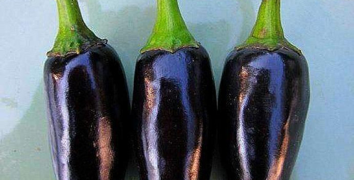 Pepper - Black Hungarian