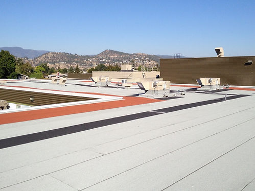 commercial roof mod bit1_edited.jpg