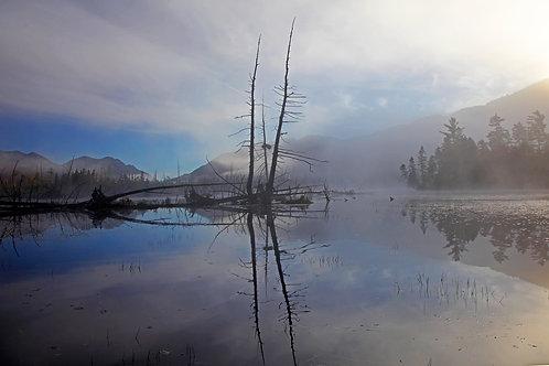Mist on Stillwater