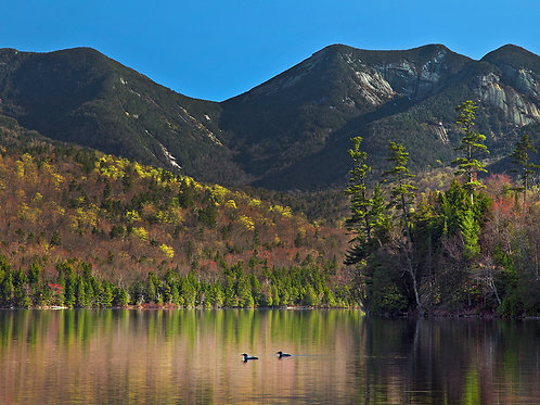 Loons and Gothic Mountain
