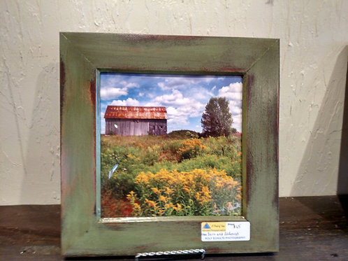 Barn and Goldenrod