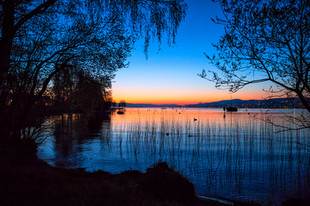 Sonnenuntergang Freienbach