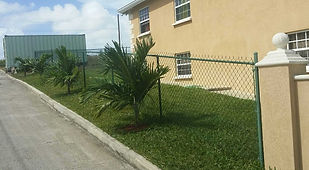 Green PVC coated domestic 5ft chain link fence