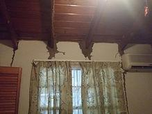 termites by window - Copy - Copy.jpg