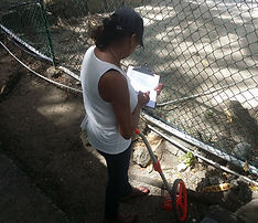 Dolores making assesment of damaged chain link fence.