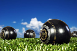 Just be a member & support your local Bowls club