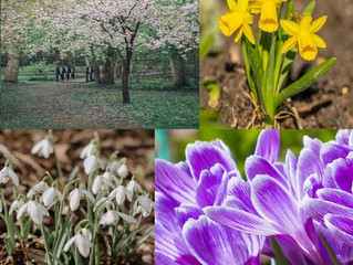 Walking Mindfully this weekend, find those flowers