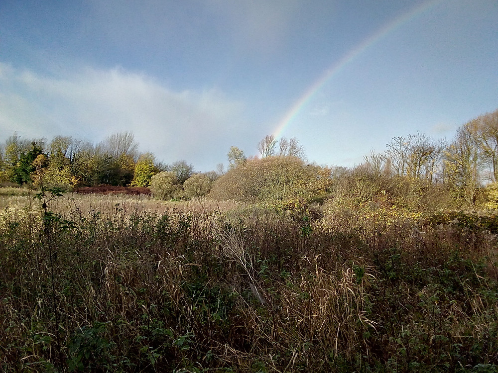 Rainbow seen Mindful contact Nature