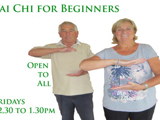 Tai Chi class at Naughton Fields