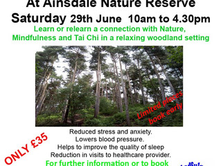New Mindfulness In Nature Day - Ainsdale