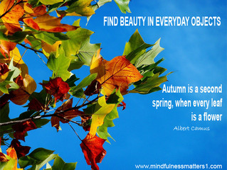 Summer ends, Autumns blaze of colour comes in