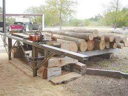 Logosol Chainsaw mill, ash logs127.jpg
