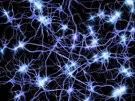Apprendimento e crescita cerebrale