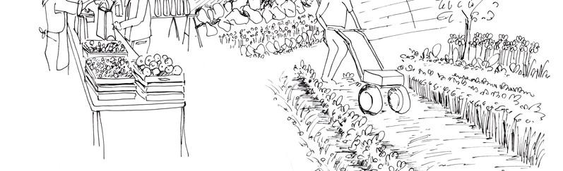 ILLUSTRATIONS POUR LE JEU TEPOS/ E.T.A.P.E.S PAYSAGE