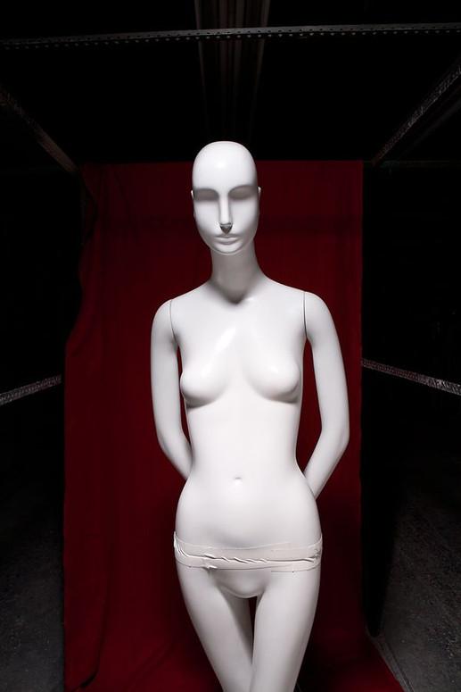 3_0_141_109_015_test_273_1a_mannequins.j