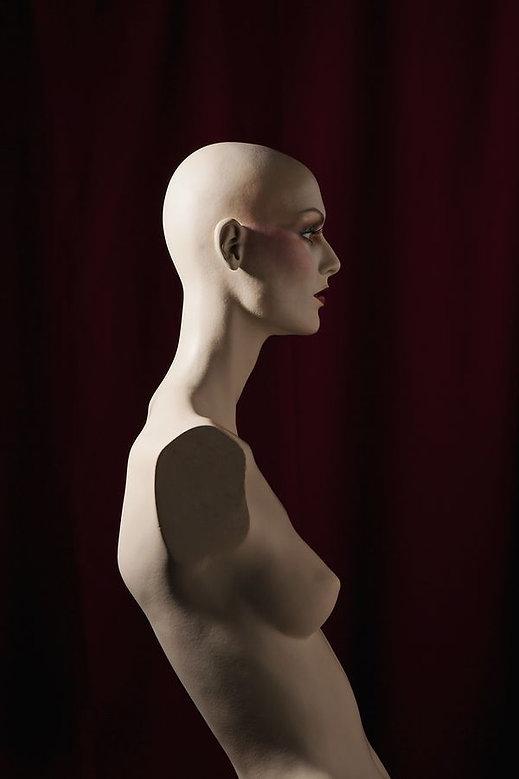 1_0_143_109_014_test_103_1a_mannequins.j