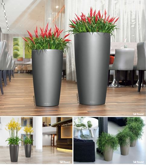 plant container 2.JPG