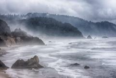 oregon coast110505  038_std.jpg