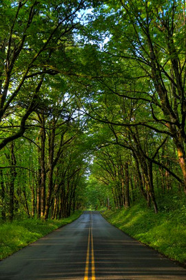 _mg_9793_old highway final_std_std.jpg