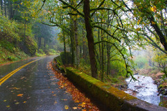 gorge highway121020 313c_std.jpg