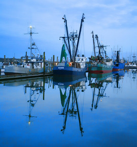 Harbor on Oregon Coast