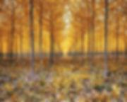 cottonwood 16x20-final.jpg