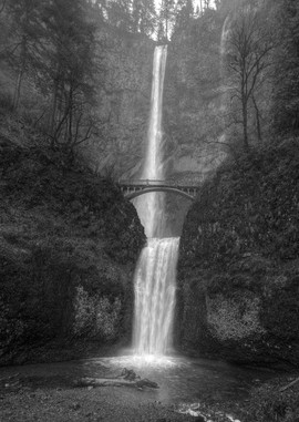 multnomah falls_mg_1540_bw_std.jpg