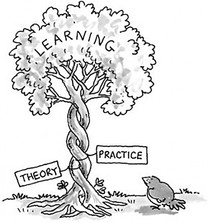 In practice, which theories are we using?