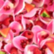 RosePhyto_Detail.jpg
