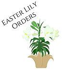 Lily Orders.jpg