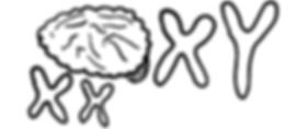 nevro.png