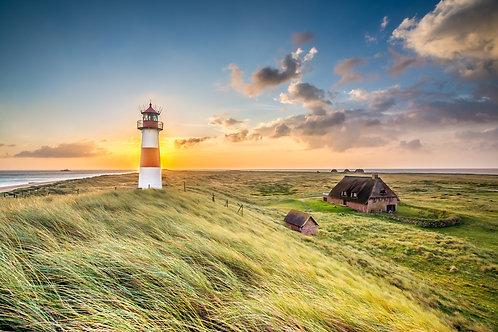 Butter bei die Fische - Nordfriesland
