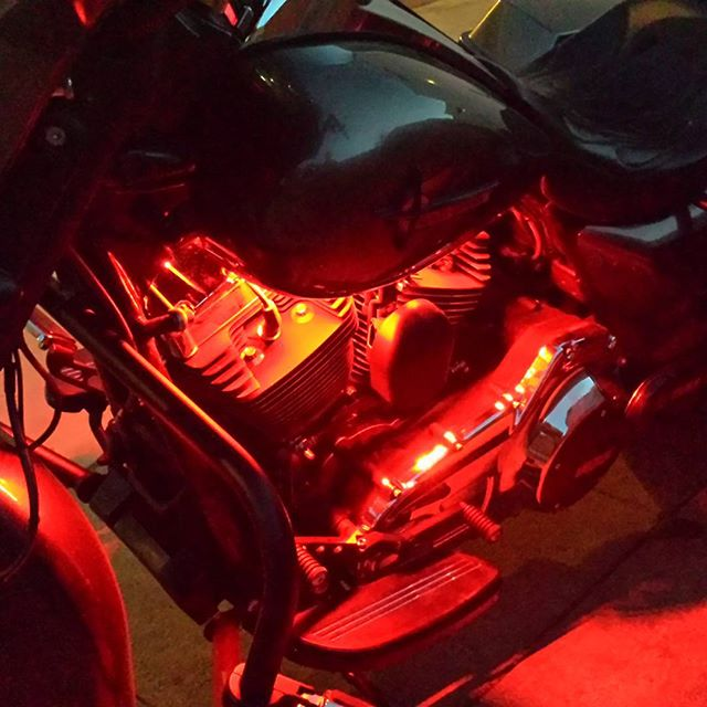 RGB Viper Harley