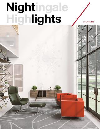 NightLights Newsletter Jan 2019